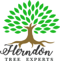 Herndon Tree Experts Logo